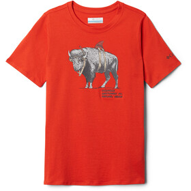 Columbia Peak Point T-Shirt Boys wildfire/sharkalo graphic